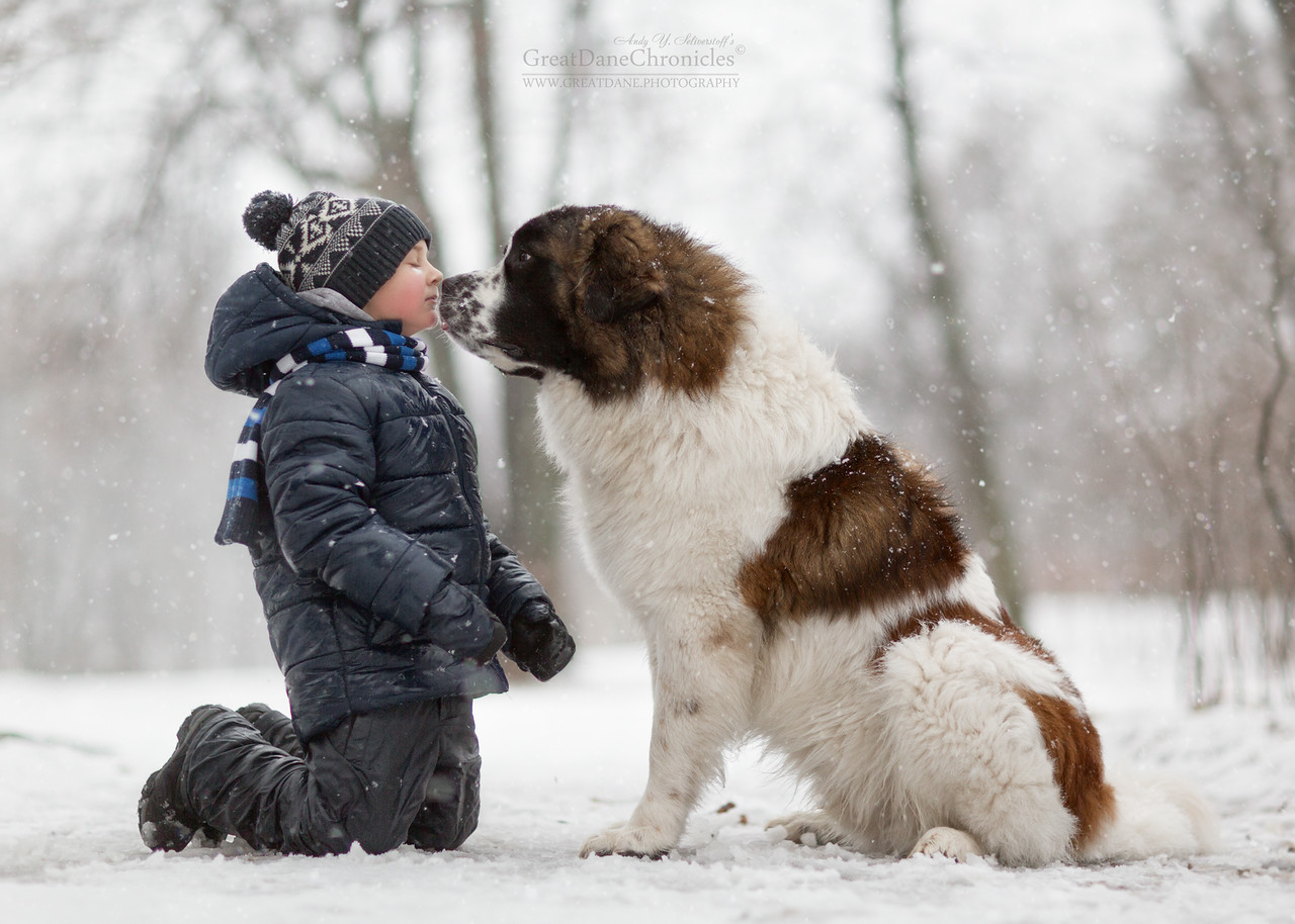 Photographs Of Little Children With Large Dogs Maximum
