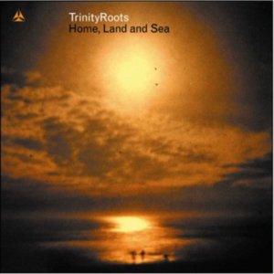Trinity Roots