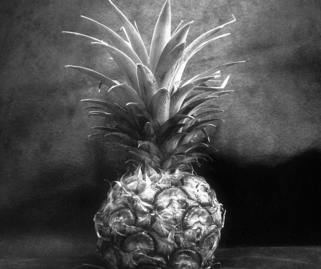 Pineapple light study #02 - Shanghai GP3 100 shot at EI 400. Black and white negative film in 120 format shot as 6x6. Push processed 2 stops.