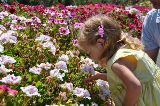 Smelling the sweet flowers.