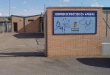 centro de proteccion animal arroyomolinos