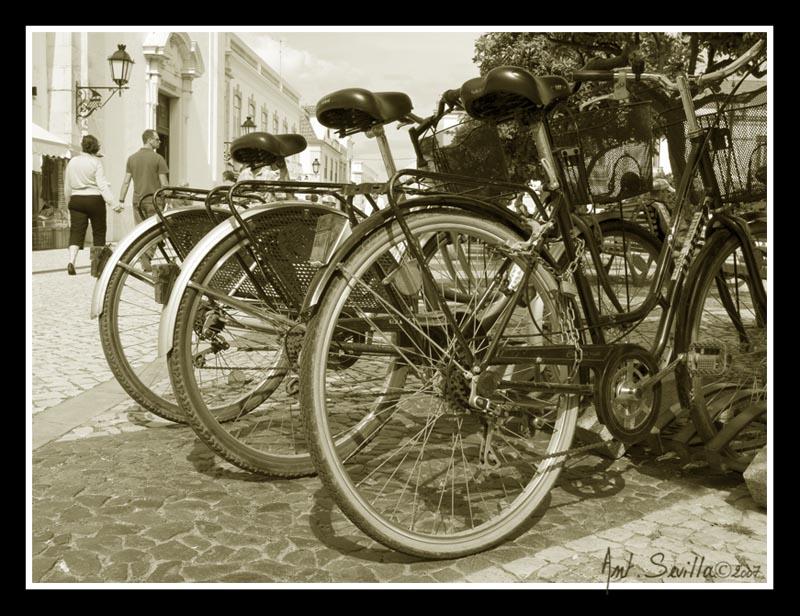 Oda a la bici (I)