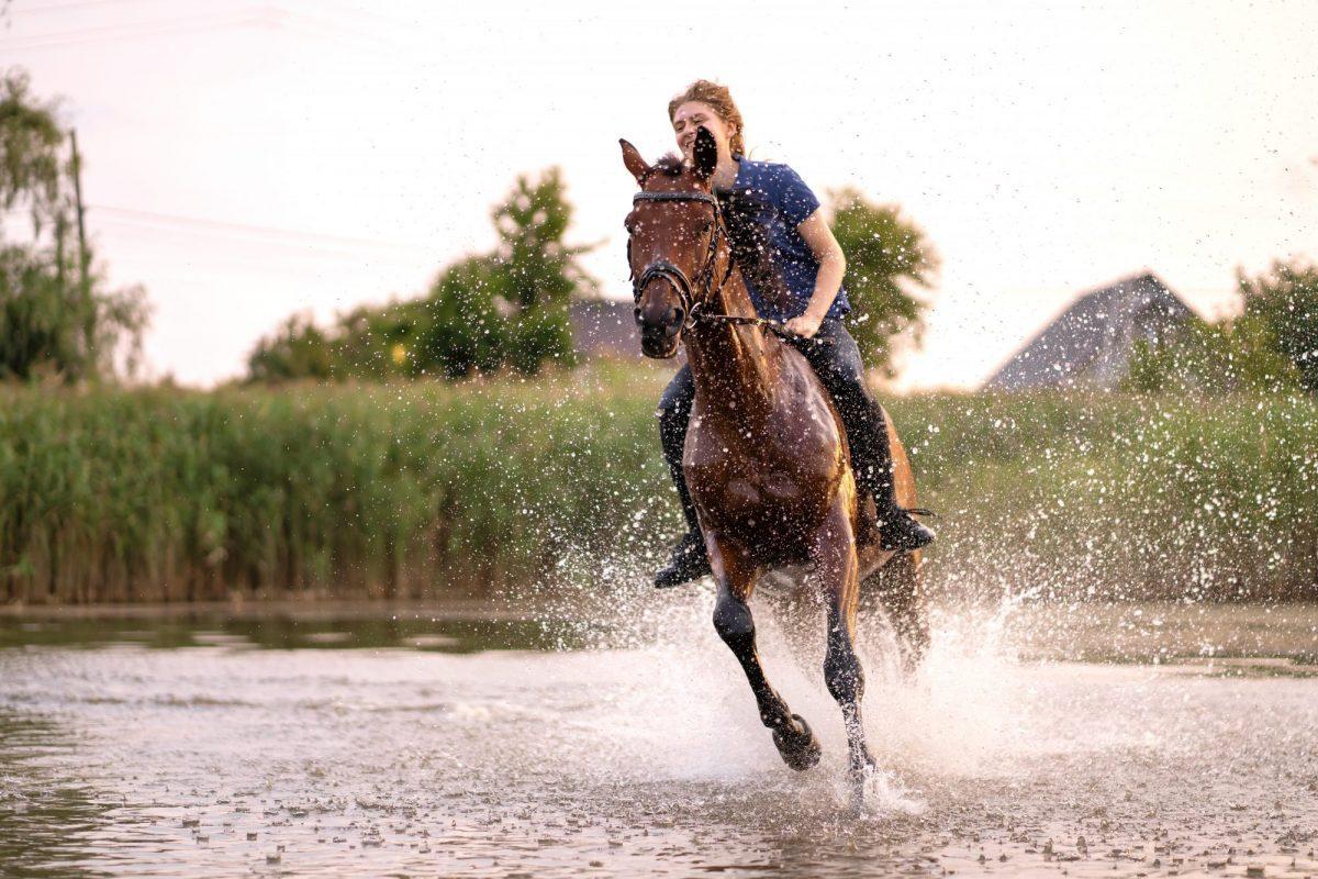 Montar a caballo en el Bajo Aragón