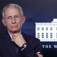 La pandemia en Estados Unidos podría superar los 100 mil casos nuevos por día: Dr. Anthony Fauci