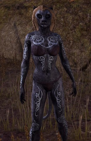 Seaborn Silver Skin Khajiit