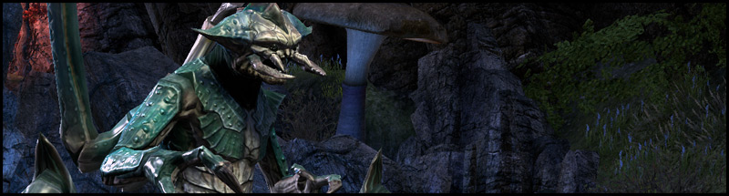 kragh the dreugh king Fungal Grotto 1 Dungeon