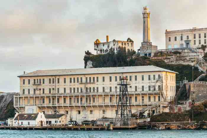 Alcatraz Tour with One Day Bike Rental