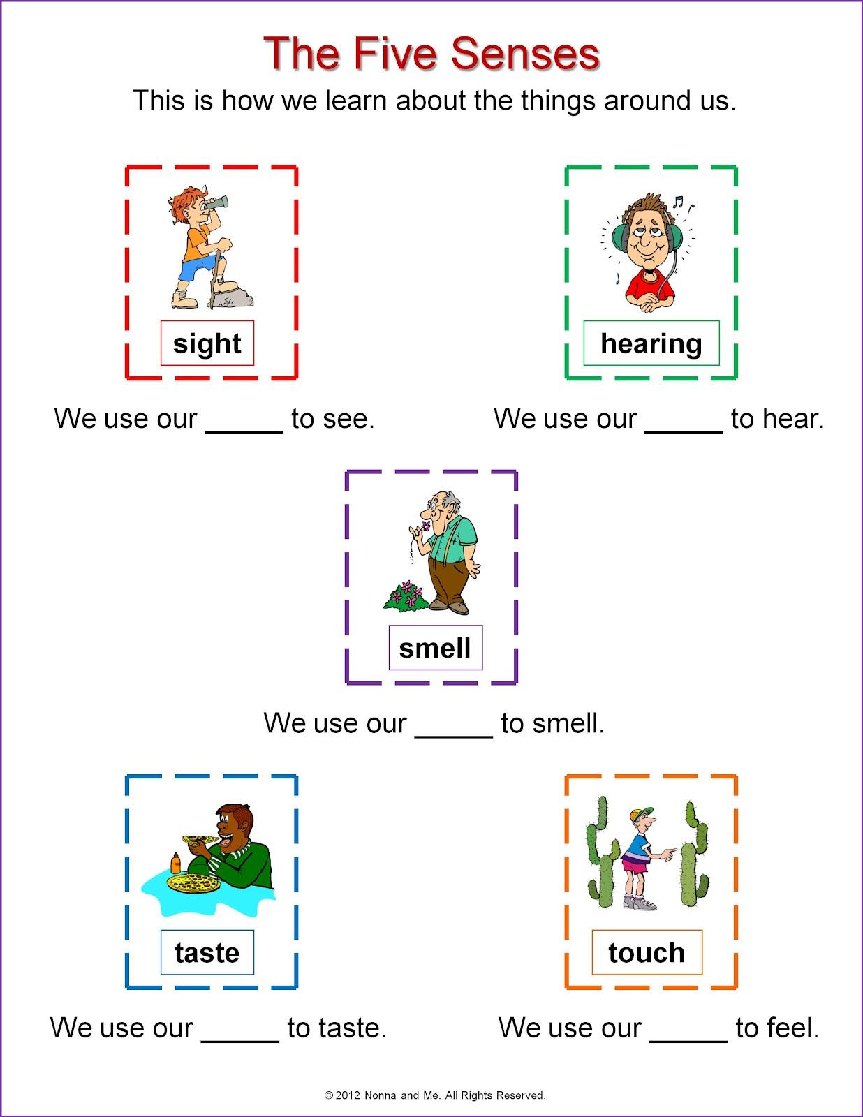 Unit 1 Senses And Organs