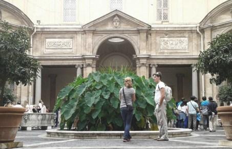 Alocasias en el Cortile Ottagono, Museos Vaticanos