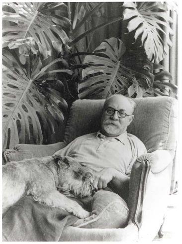 Matisse con perro y monstera