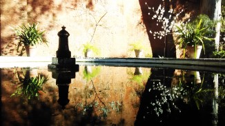Melocotonero reflejado en un estanque, Jardín de los Poetas