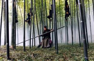 """Bosque de bambúes en """"La Casa de las Dagas Voladoras"""" de Zhang Yimou, 2004"""