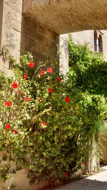 Pacíficos en el Real Alcázar de Sevilla