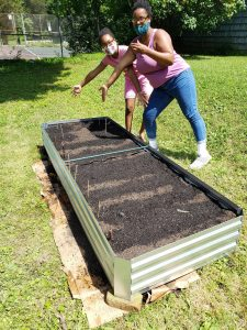 First raised bed install