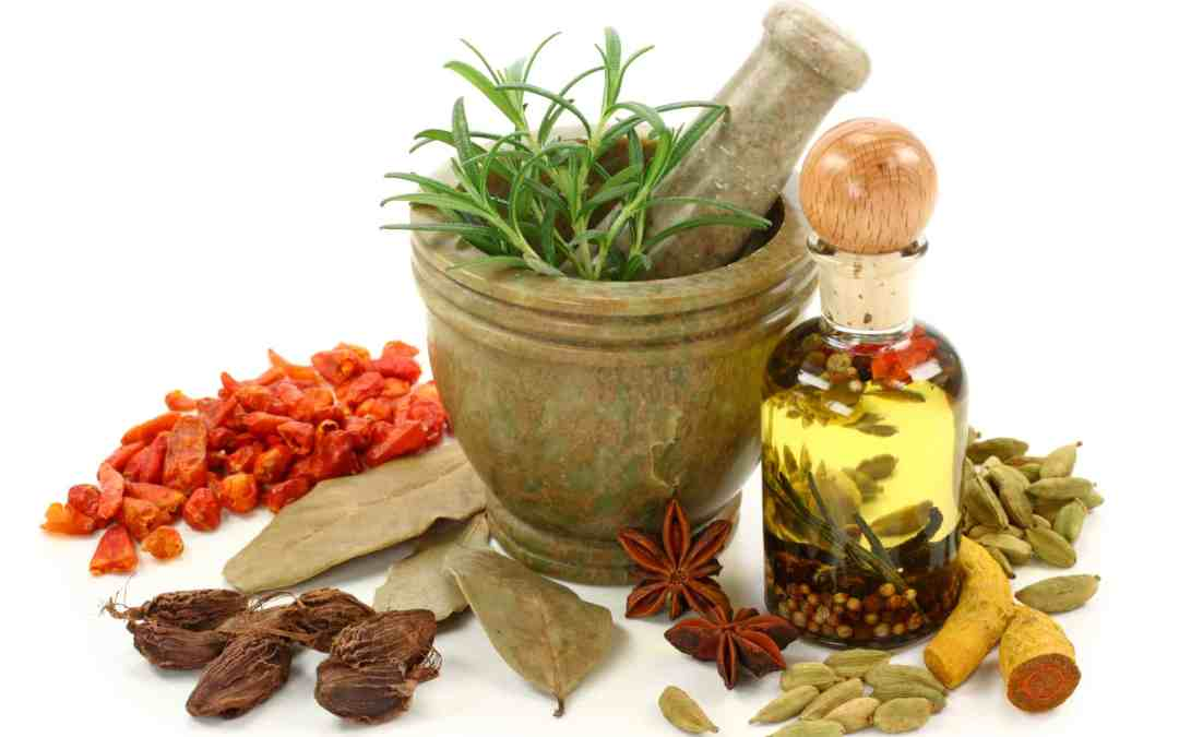 An afternoon of Ayurveda – Saturday Sep 30, 1-4 pm