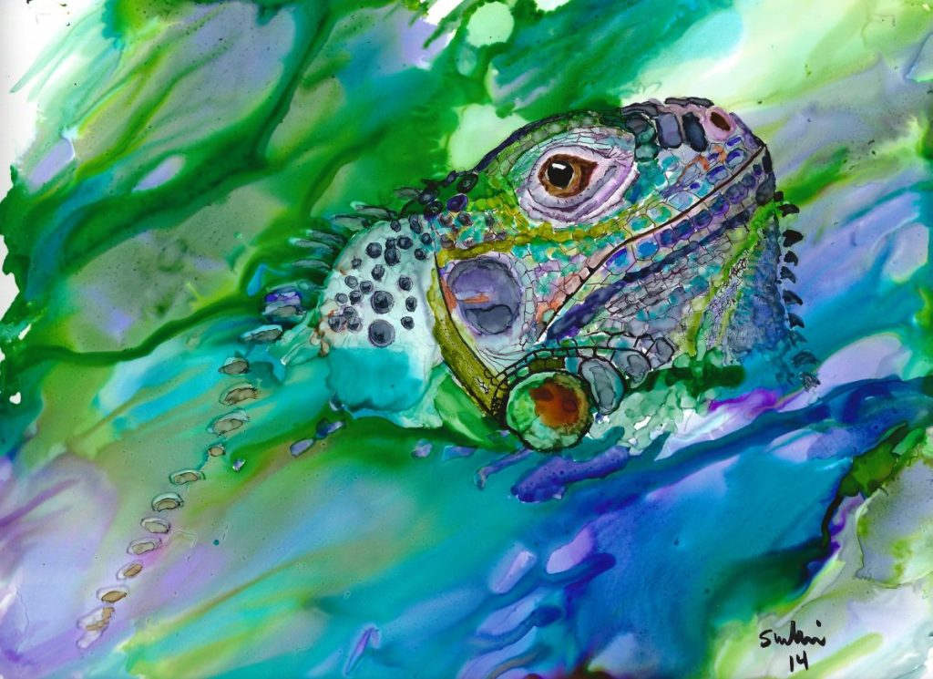 Iguana Emerging