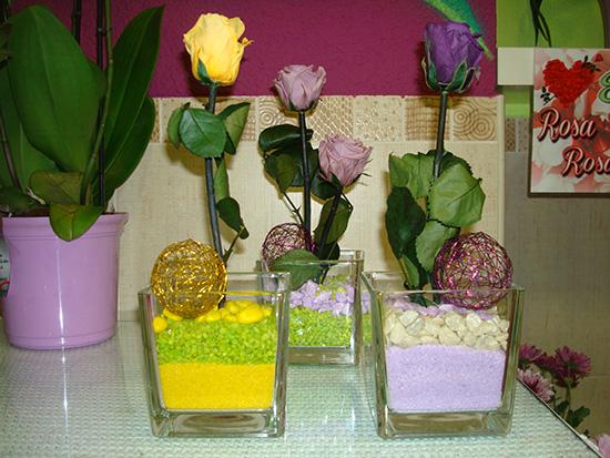 Rosa preservada eterna natural con jarrón de cristal incluido a 15 €