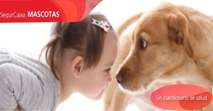 Seguro de Mascotas con SegurCaixa Adeslas Alcorcón