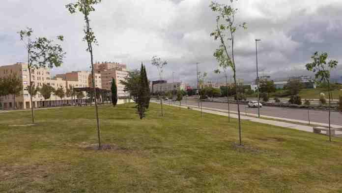 Campaña de plantación de invierno de Alcorcón 2020-2021 con 470 árboles
