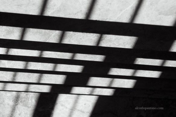 IMG_8318 cerco sombra ok flickr 2