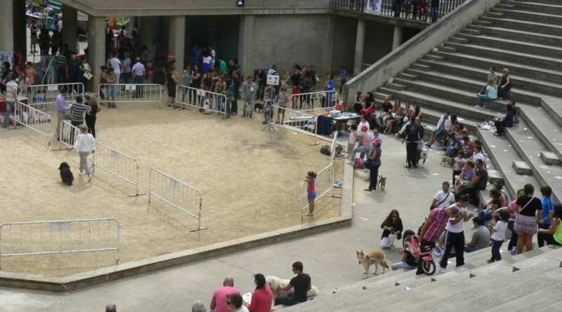 amphitheatre zona norte alcoy