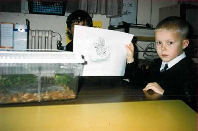 Pet at school - Gordon the tarantula.