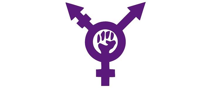 Transfeminism_symbol_purple2