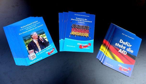 Flyers y folletos del partido ultraderechista Alternativa para Alemania, la extrema derecha en Alemania. Autor: Oxfordian Kissuth, 27/08/2016. Fuente: Wikimedia Commons. (CC BY-SA 3.0).
