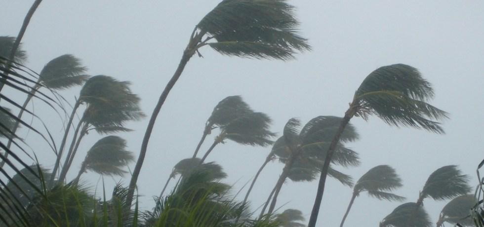Expertos discuten efectos de cambio climáticos en Puerto Rico