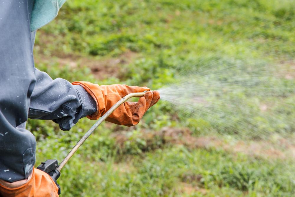 Radican proyecto para prohibir uso de glifosato para desyerbar en propiedad pública