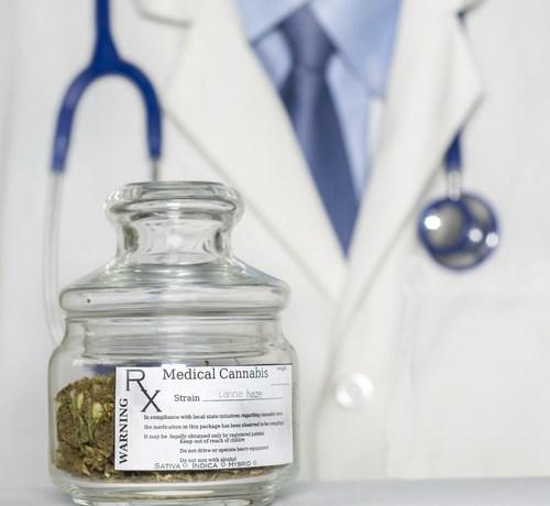 Crean frente común para promover industria del cannabis medicinal en Puerto Rico