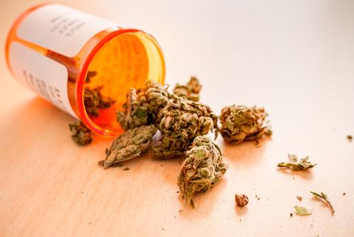Senado evalúa medida para atender uso de cannabis medicinal