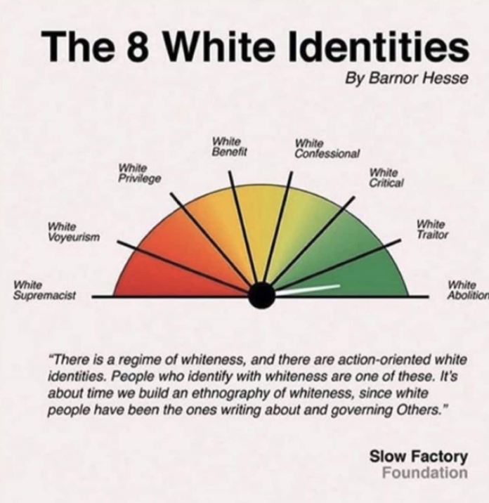 US school sends out chart calling for an end to 'regime of whiteness'