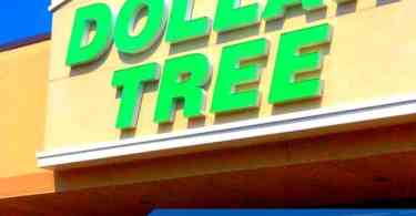 Alea's Deals Things You SHOULD Buy at the Dollar Tree