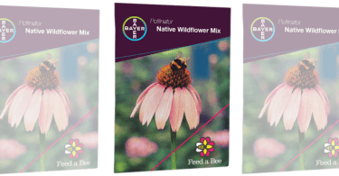 Alea's Deals Request a FREE Wildflower Seed Packet | Help Save The Bees