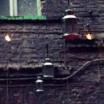 lampy przedbiałą małpą