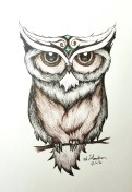 Ink drawing owl