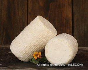 израильский сыр из козьего молока