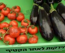 Сельское хозяйство в Израиле