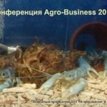 Фотографии с научно-практической конференции Agro-Business 2015