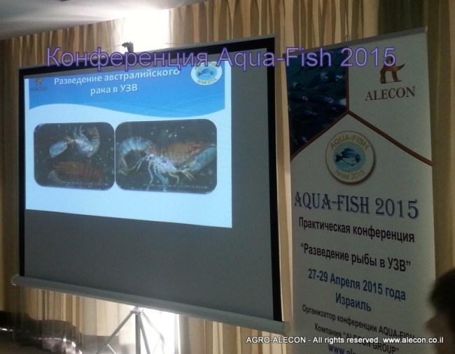 рыбная конференция Аква-Фиш 2015 Разведение рыбы