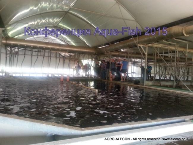 рыбная конференция Аква-Фиш 2015 Разведение рыбы и рака