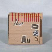 AMa_AZa_LaNdO-Cajas_(38_de_93)