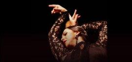 Flamenco Intensivo com Ana Paula Campoy