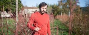 Pequenos Frutos: Unir produtores para ganhar força nos mercados