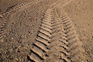 CDS quer ver definidas as principais posições em matéria de Política Agrícola Comum