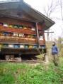 La maison des abeilles