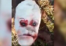 Graban nacimiento de becerro con 'rostro humano' [VIDEO]