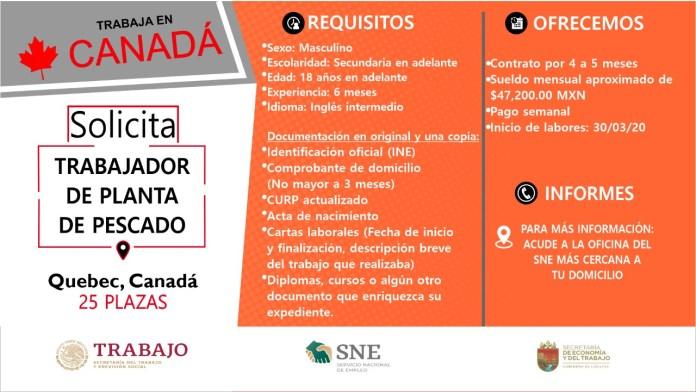 Ofertará Secretaría de Economía y del Trabajo más de mil vacantes WhatsApp Image 2019 10 13 at 2.16.14 PM