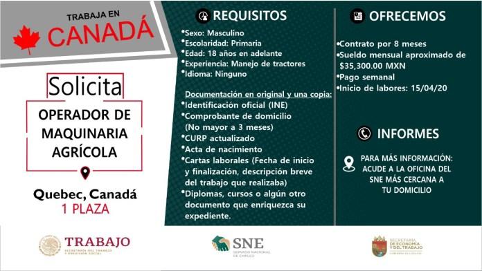 Ofertará Secretaría de Economía y del Trabajo más de mil vacantes WhatsApp Image 2019 10 13 at 2.16.16 PM 2